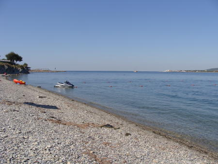 На берегу Геленджикской бухты